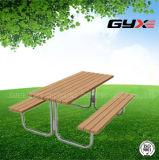 Mesas y sillas combinadas para Park (GYX-Z23)