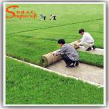 Fútbol PU artificial Césped Hierba de alfombras en precio competitivo