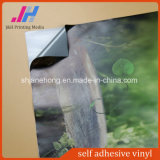 Film en bois auto-adhésif de vinyle des graines