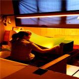 Положительный восходящий поток теплого воздуха плиты CTP для Kodak Agfa FUJI