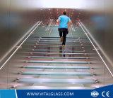 Claro / Tinted / reflectante / hoja / templado / laminado Vidrio y Cristal de Cristal de construcción