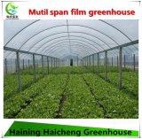 Invernadero de la película del surtidor de China con alta transmitencia