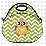 Le déjeuner isolé thermique de pique-nique de configuration de hibou met en sac le sac de conteneur de cadre de repas scolaire de gosses