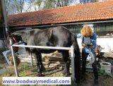 Machine à imagerie par ultrasons de grossesse à la vache ovine de cheval