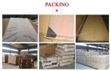 Portes en bois de stratifié bon marché d'intérieur avec la glace