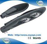 Luz de calle caliente de la venta Ce/RoHS 30With50With60With70With80With100W /120W/140W/150W/160W/180W/200W/320W LED de Yaye 18 IP65/con 10 años de experiencia de la producción