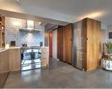 O melhor gabinete de cozinha da venda direta da fábrica do sentido