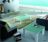 Tavolino da salotto del metallo bianco con la parte superiore di vetro Tempered (CJ-074A)
