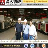 Caldaia infornata alto carbone di risparmio di temi termico di Dzl2-1.25-Aii 2ton 13bar