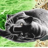 100%Polyester пантера Pigment&Disperse напечатала ткань для комплекта постельных принадлежностей
