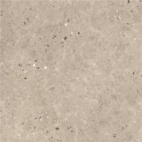 Suelo del nuevo cemento italiano del diseño y azulejo de madera de la pared (SD600011B)