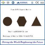 Indicatore-Trasmissione di Mne-Bt050ht1 e moduli vuoti di BIPV per la struttura di costruzione