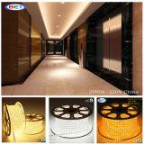 5050 6500k indicatore luminoso bianco ad alto rendimento 100m esterno della striscia LED