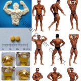 CAS: 5721-91-5 het hoge Testosteron Decanoate van het Poeder van de Zuiverheid >99 Steroid