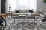 Sofá moderno de la sala de estar de Europa del estilo del sofá del norte de la tela (HC8806)