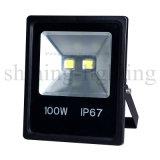 Lampe imperméable à l'eau extérieure de projecteur du projecteur DEL de haute énergie de la lumière 100W d'horizontal de l'éclairage AC85-265V DEL du jardin IP67