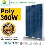 fornitori del comitato di energia solare del tetto 300W in Cina