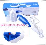 Ferri portatili elettrici della spazzola del vapore dei vestiti