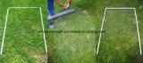 Rete metallica galvanizzata del pollo/rete metallica esagonale