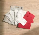 Mini tarjetas y sobres creativos de biblioteca con el papel de imprenta