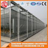 Landwirtschaft Multi-Überspannung Garten-ausgeglichenes Glas-Gewächshaus