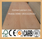 (最もよいPrice) 5mm、8mm、9mm Okoume PlywoodまたはBirch Plywood/Poplar Plywood