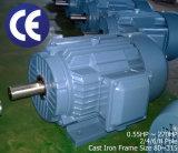 0.55~200kw、1500rpm~4ポーランド人の230/400V 3pHの電動機