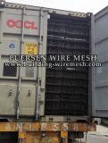 Maglia della lastra di cemento armato/maglia rinforzante d'acciaio saldata (PS0056)