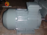 Hohe Leistungsfähigkeits-Elektromotor (Roheisen-Rahmen, 1HP-270HP)