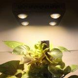 Large spectre de Cxb3590 Le Grow Light d'ÉPI de CREE de la haute énergie 400W