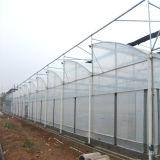 Invernadero de la azotea del zigzag/invernadero/invernáculo/invernáculo/cultivador Hothouse/grande