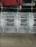 중국은 철사를 검술하는 5FT Hinge&Fixed 매듭 사슴 담 또는 사슴을 공급한다