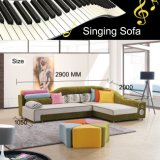 De kleurrijke Bank van de Stof met Functie en Systeem 821 van het Bed van de Bank van de Muziek