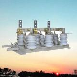 1250A 12kV cubierta de aislamiento interruptor de alta tensión con la Tierra (GN24-12D-1250A)