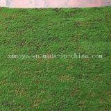 擬似コケ/草が付いている環境に優しく高い模造人工的なプラント壁