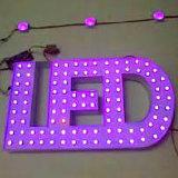 Segno luminoso della lampadina della lettera esposto LED
