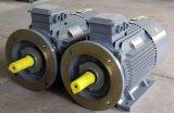 (IE2, GB3) moteurs asynchrones triphasés du rendement Ye2 élevé