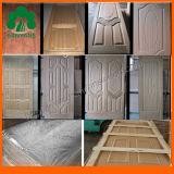 Pannelli di rivestimento decorativi del portello interno Lastest di disegno all'ingrosso della Cina