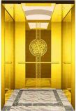 A tração Gearless Vvvf conduz para casa o elevador da casa de campo (RLS-234)