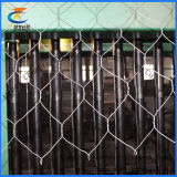 (PVC/quente/elétrico) engranzamento de fio de Gabion (6*8 8*10)