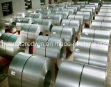 Placa de acero de la fuente Gi/Galvanized Coil/Steel