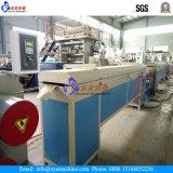 Filato di corda/fibra/filamento/monofilamento di plastica e corda che torcono la riga della macchina