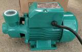 elektrische Pumpe des Oberflächenwasser-0.37kw/0.55kw/0.75kw für Trinkwasser (QB60/QB70/QB80)