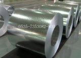 Pre-Painted гальванизированный стальной лист в катушке PPGI