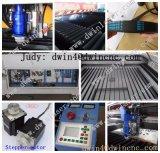 Heißer Verkaufs-nicht Metall-und Metalllaser-Ausschnitt-Maschinen-Preis
