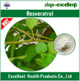 Extrait géant normal Resveratrol de Knotweed