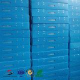 Caixa oca personalizada dos PP para a caixa plástica do armazenamento & do empacotamento & da modificação