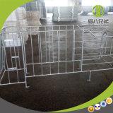 Stalles galvanisées de truie d'IMMERSION chaude de ferme de porc de modèle moderne