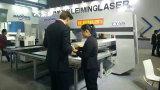 FanucまたはSiemensシステムが付いている油圧またはServoまたは機械装置のタイプCNCのタレットの打つ機械