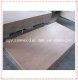 madera contrachapada de la chapa de la madera contrachapada del abedul de 18m m diversa